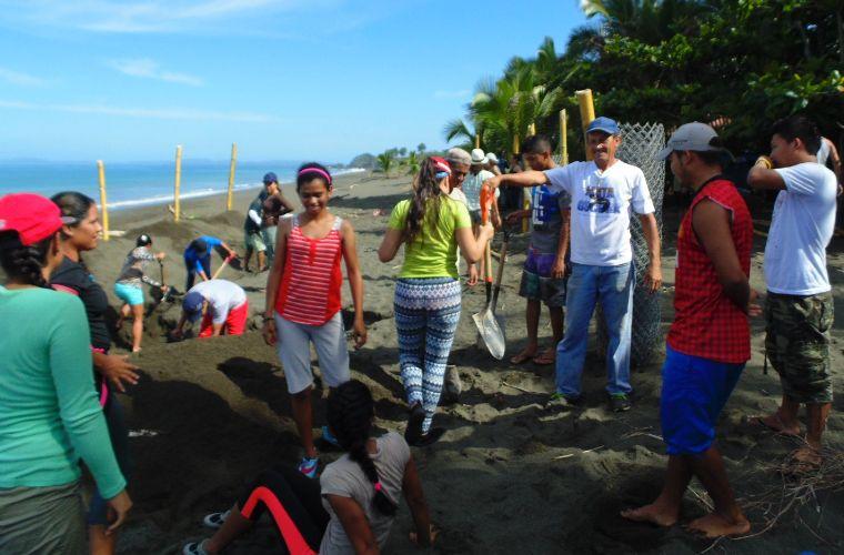 Reconstruyen viveros de tortuga en playa mata oscura en for Matas de viveros