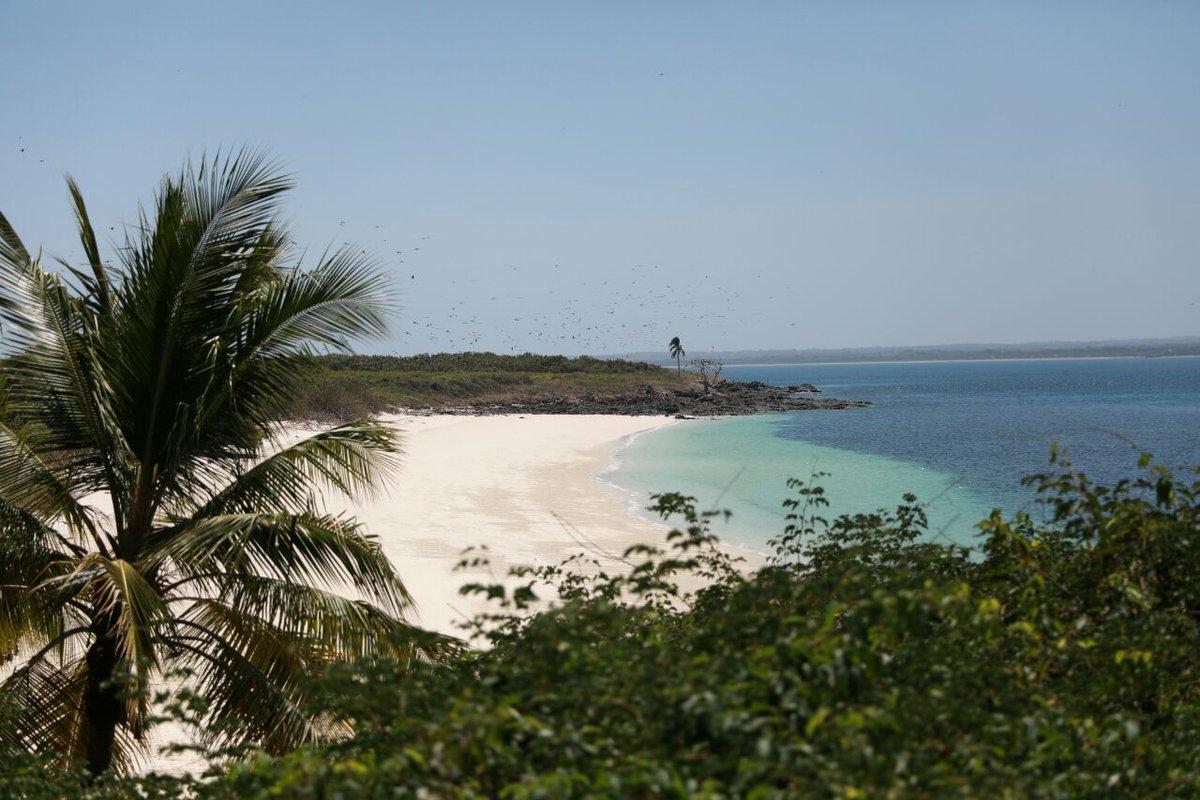 Reanudan visitas a isla Iguana tras cuatro bombas encontradas
