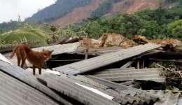 Un caso similar al de Mianmar ocurrió este 23 de mayo en Sri Lanka, donde  92 personas murieron y 109 desaparecieron por un deslave que ocurrió a consecuencioas de las lluvias caídas en la región.  /  Foto: EFE Archivo